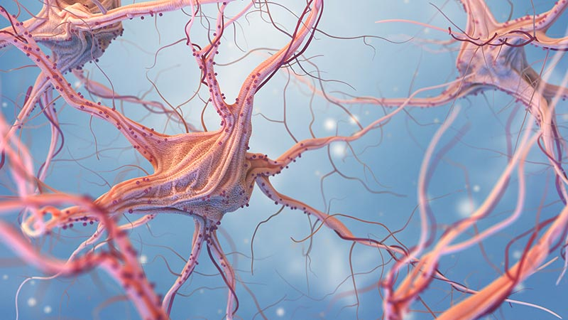 3D render of neurons on blue background
