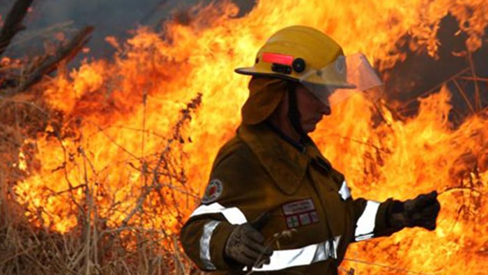 Firefighter in protective equipment standing in front of bushfire flames