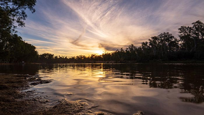 View of the Murray River from the bank with trees silhouetted in background and sunset